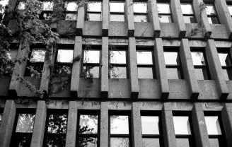 bauhaus-windows
