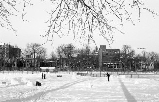 cross-country-skiing-parc-jeanne-mance